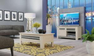 Image 3d d'un salon avec une table basse et un meuble télé